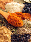 Spices. Spoon of paprika above various of spices royalty free stock image