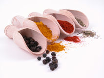Free Spices Royalty Free Stock Image - 873856