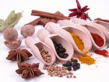 Free Spices Royalty Free Stock Image - 874176