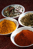 Spices. Indian spices in white bowls Stock Image