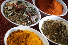 Spices. Indian spices in white bowls Stock Photos