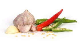 Spices. Isolated cooking herbs and condiments stock images