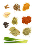Spices. Spice collection isolated on white background Stock Photos
