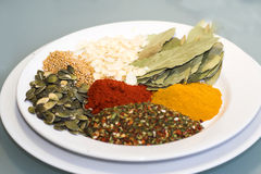 Spices. Variety of colorful spices stock image