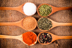 Spices above Stock Photography