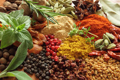 Free Spices And Herbs Royalty Free Stock Images - 25278709