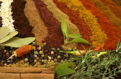 Free Spices And Herbs Royalty Free Stock Images - 3602529