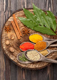 Spices And Herbs Over Wood. Stock Photos