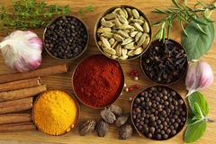 Spices ang herbs Stock Image