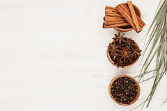 Spices - aniseed, cinnamon, cloves and herbs in wooden bowls on a wood white background. Spicy seasonings for cooking. Top view Royalty Free Stock Images