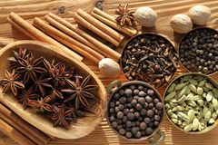 Spices. Royalty Free Stock Images