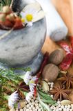 Spices and aromatic herbs Stock Photography