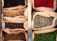 Spices from around the world. Shot at a bio fair in Provence Royalty Free Stock Images
