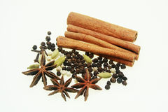 Spices of asia Stock Images