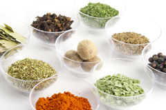 Spices assortment Stock Photos