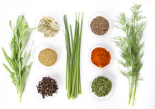 Spices assortment Stock Photo