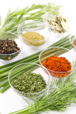Spices assortment Royalty Free Stock Photography