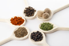 Spices assortment Royalty Free Stock Images