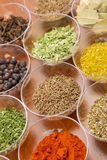 Spices assortment Stock Image