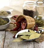 Spices Assortment Royalty Free Stock Photo