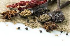 Spices. An assortment of different spices for cooking Stock Images