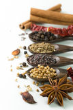 Spices. An assortment of different spices for cooking Royalty Free Stock Image