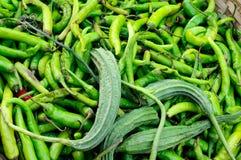 Spices, aubergine Royalty Free Stock Photos
