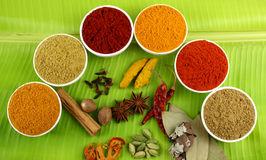 Spices on banana leaves Royalty Free Stock Photos