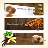 Spices banners horizontal Stock Photo