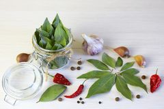 Spices and spices. Bay leaf in can, garlic cloves and hot chili. Pepper Royalty Free Stock Photo