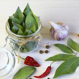 Spices and spices. Bay leaf in a jar, garlic and hot chilli pepp. Er Royalty Free Stock Photo