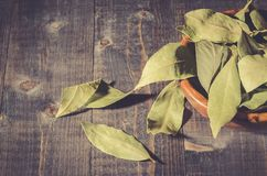 Spices of bay leaf in rural style/bay leaf on a dark wooden surface. Toned stock image