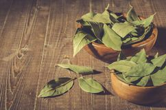 Spices of bay leaf in rural style/bay leaf in a two wooden bowl. Copy space stock photos