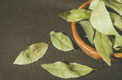 Spices of bay leaf in rural style/bay leaf in a wooden bowl on a black stone background. Copy space stock images