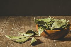 Spices of bay leaf in rural style/bay leaf in a wooden bowl on a royalty free stock images