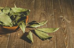 Spices of bay leaf in rural style/bay leaf in a wooden plate. Copy space stock images