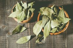 Spices of bay leaf in rural style on a dark background/bay leaf on a dark wooden surface. Top view royalty free stock photo