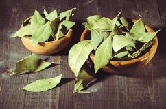 Spices of bay leaf in rural style on a dark background/spices of bay leaf in rural style. selective focus stock photos