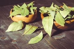 Spices of bay leaf in rural style on a dark background/bay leaf on a dark wooden surface. selective focus. Leaves two bowl food ingredient green organic cooking stock photo