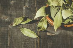 Spices of bay leaf in rural style/bay leaf on a dark wooden surface. Top view. Leaves bowl background food ingredient green organic cooking dried dry rustic stock photo