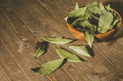 Spices of bay leaf in rural style/bay leaf in a wooden plate on a wooden background. Copy space royalty free stock photos