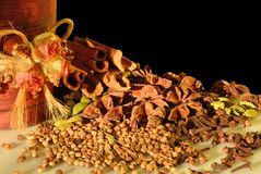 Spices on black background Royalty Free Stock Photo