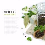 Spices, black pepper Stock Photos