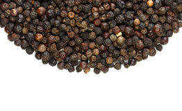 Spices black peppercorns Royalty Free Stock Image