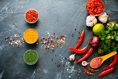 Spices on the black table Stock Image