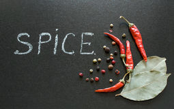 Spices on a blackboard Stock Images