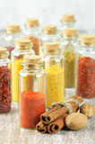 Spices in bottles Stock Images