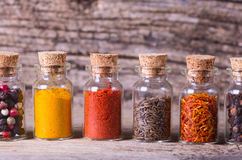 Spices in bottles Stock Image
