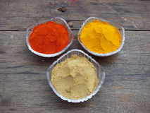 Spices in the bowl. Indian spices in the bowl Royalty Free Stock Image