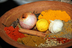 Spices bowl Royalty Free Stock Images